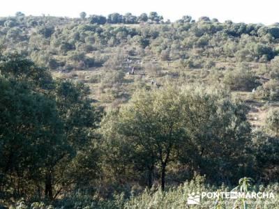 Ruta senderista por el embalse de Puentes Viejas;laguna de gredos ruta;visitas alrededor de madrid